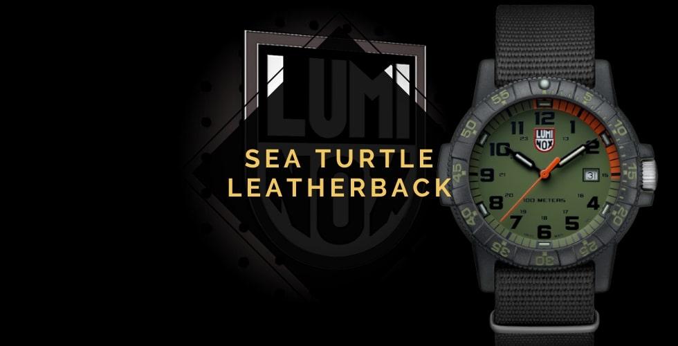 Luminox Leatherback Sea Turtle review